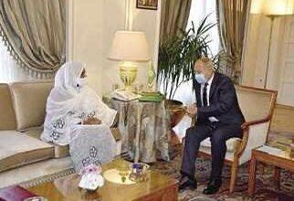 صورة مساندة عربية لحق مصر والسودان في اتفاق عادل حول «سد النهضة»